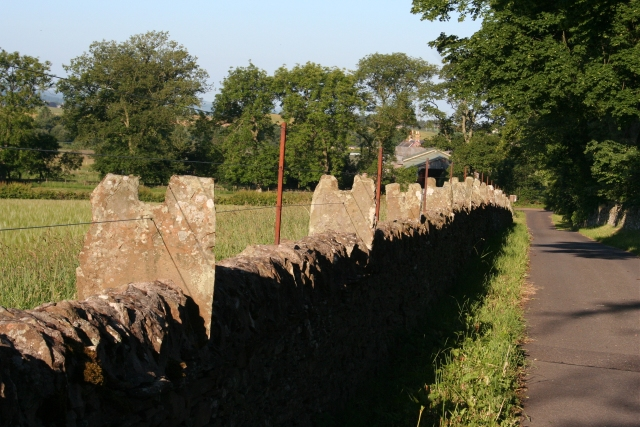 Stone fence at Pitscandly