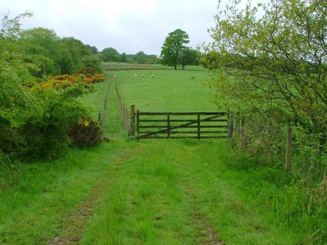 Field and Gate, Cogrie Burn
