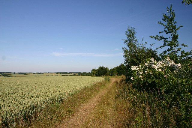 Bridleway to Stanningfield