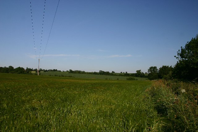 Fields near Waldegrave Farm