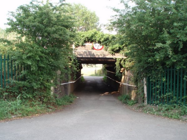 Railway bridge and tunnel