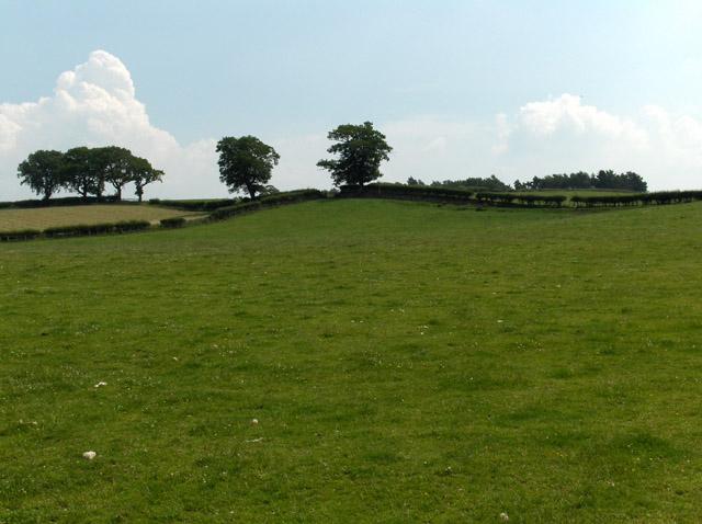 Farmland near Cotehill