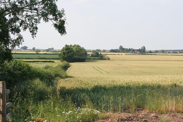 Farmland at Tithby