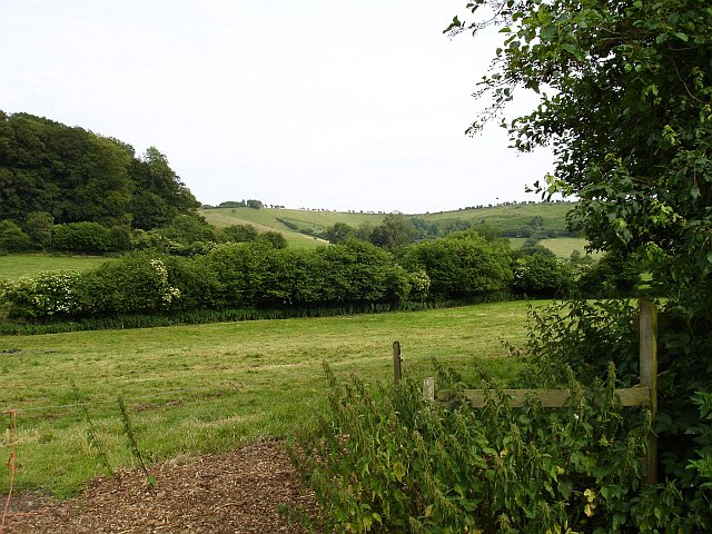 Downland near South Cadbury