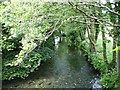 SX3170 : River Lynher by Penny Mayes