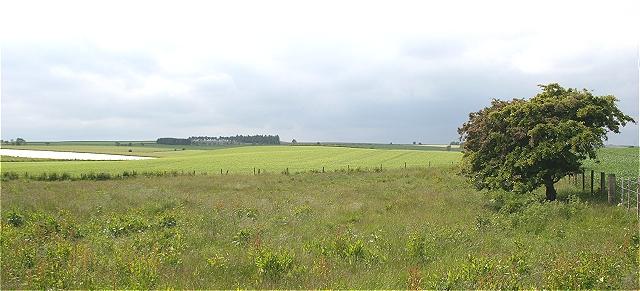 Farmland at Melgund