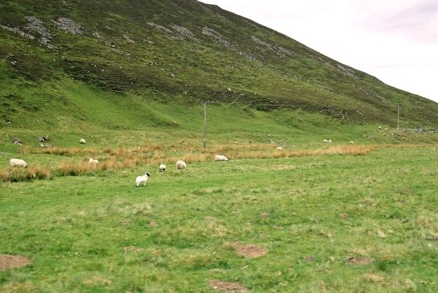 Glen Tilt near Clachghlas