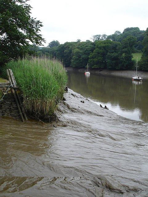 River Tamar from Cotehele Quay
