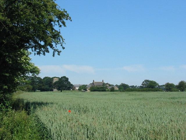 Swan Hill Farm