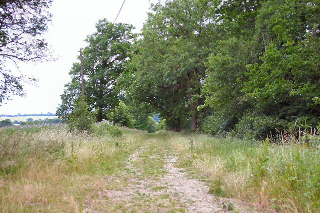 Bridleway to Chadacre Park