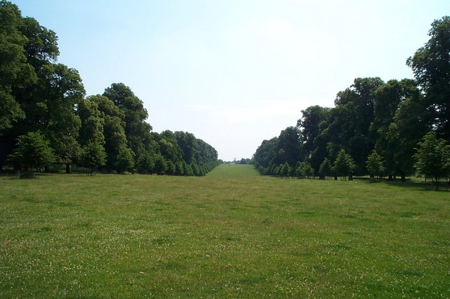 The Park at Montacute House