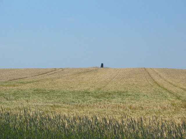 Trig pillar (32m ASL) on Rye Topping Farm near Brompton