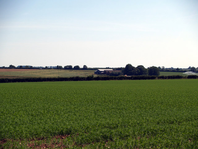 Looking towards Wootton Wold