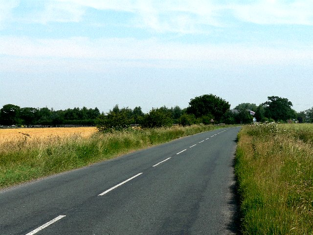 The Road from Cliffe to Skipwith