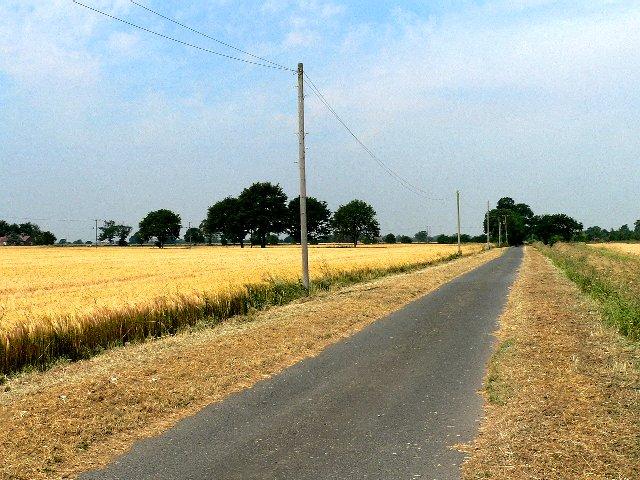 The Road to Kisima Farm