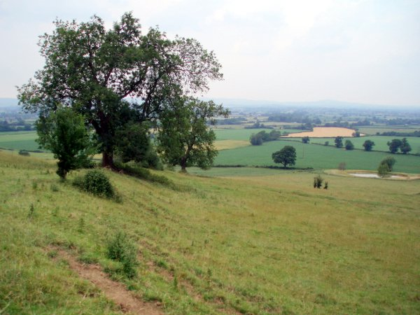 Lever's hill
