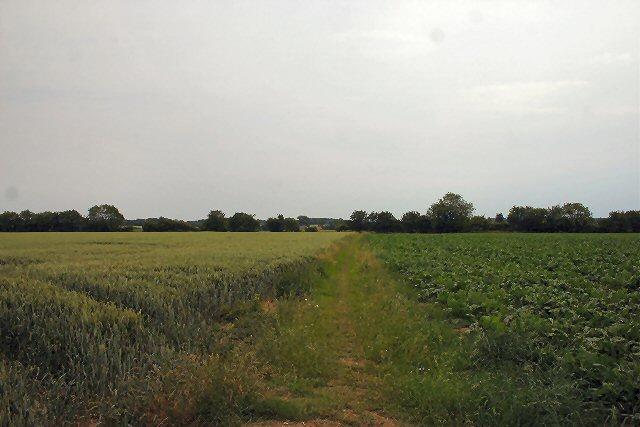 Footpath to Shimpling Street
