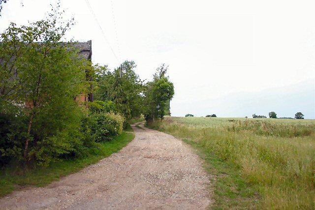Track to Trees Farm