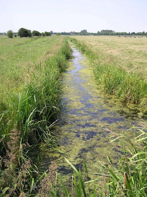 Hundred Dyke or Stream