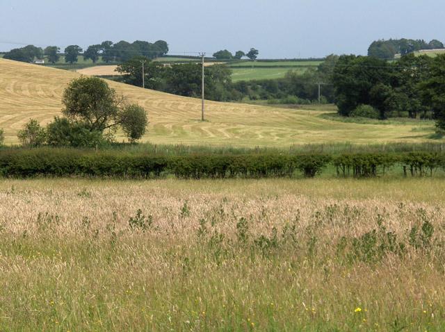 Farmland, Cotehill