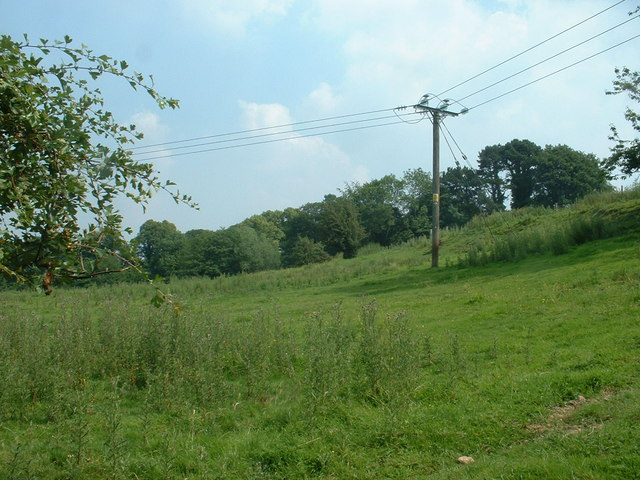 Farmland, looking towards the north end of Tower Wood