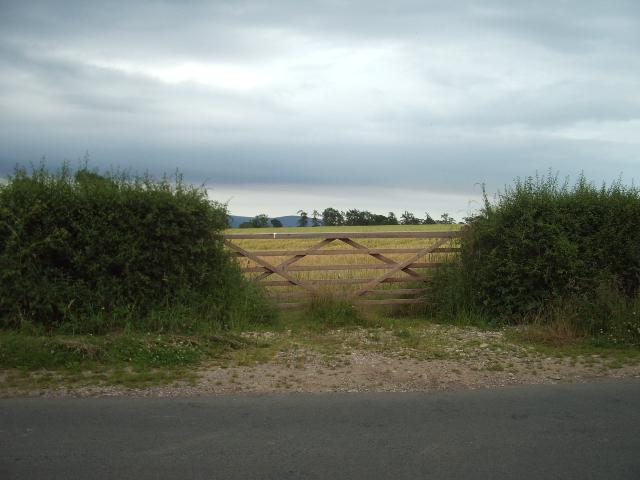 Gateway to corn