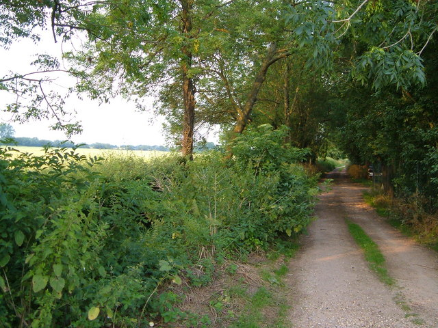 Sedgemoor Drove