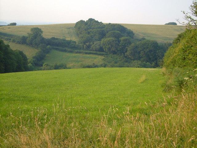 Valley of Kelland's Brook