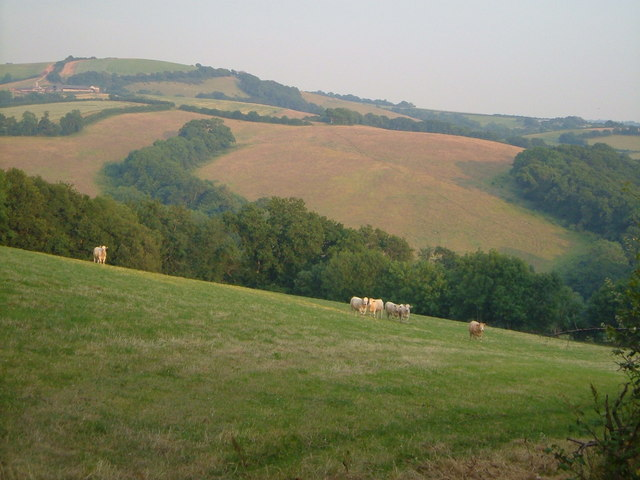 View south of Tomhead Cross
