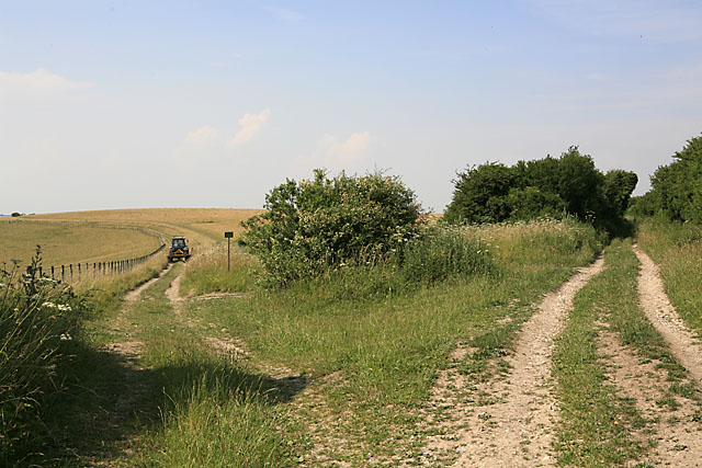 Footpath & Byway on Throope Hill