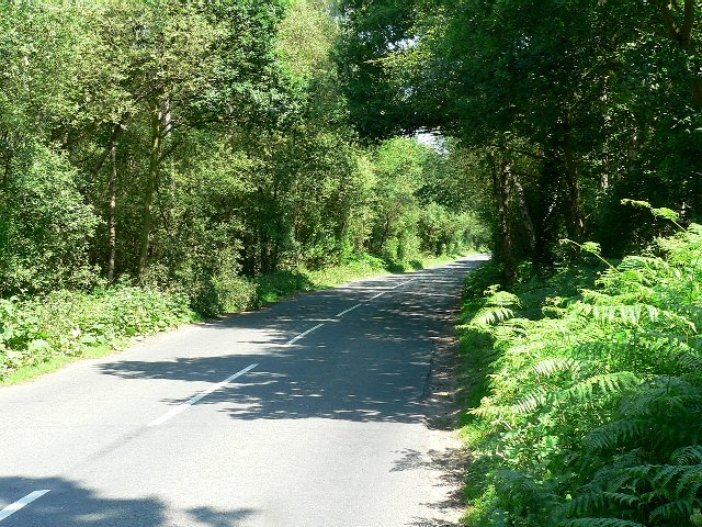 The Road from Skipwith to Thorganby