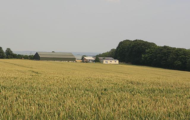 Farm buildings & mobile home at Faulstone Down Farm