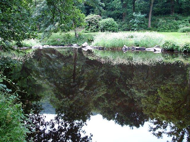 Weir on the Teign