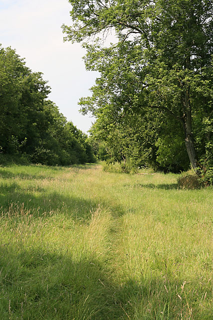 Footpath along River Ebble at Bishopstone