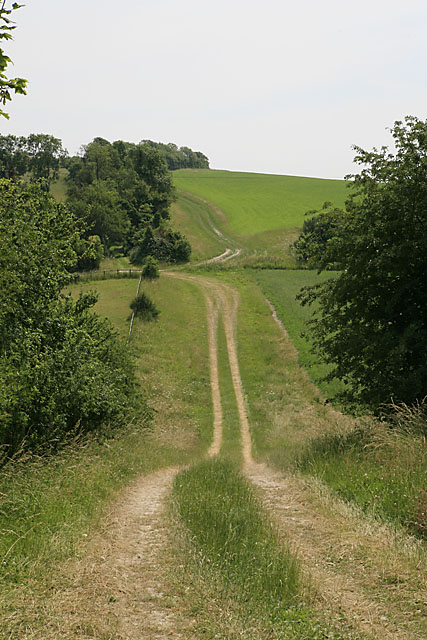Footpath going towards Throope Hill