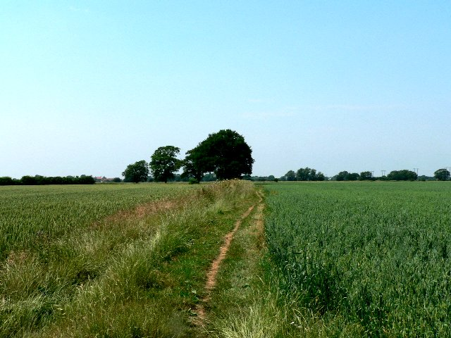 Oxen Lane to Cliffe