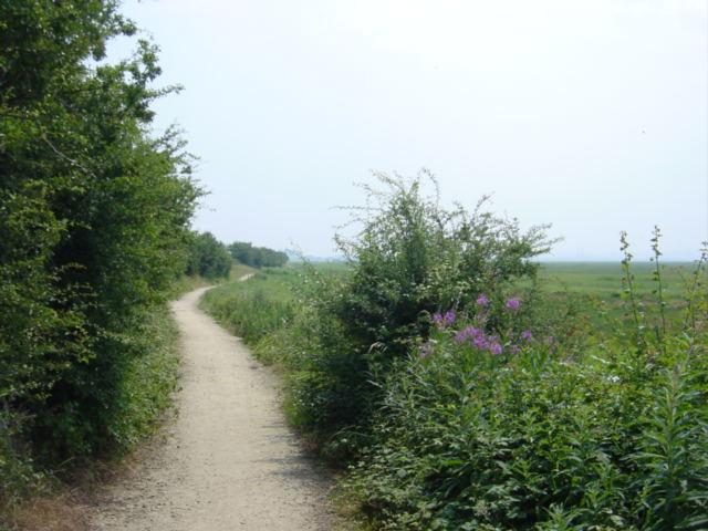 Footpath to Denhall Lane, Ness