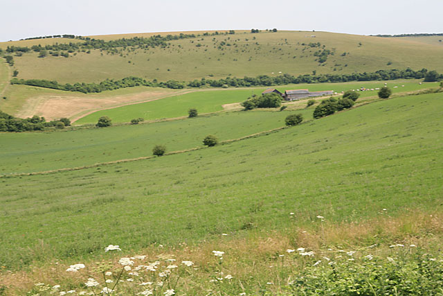 View of Throope Hill from footpath above Faulston