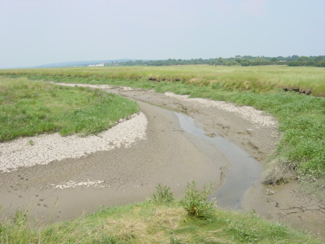 A Channel in the Dee Marshes