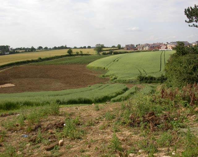 Fields and Houses