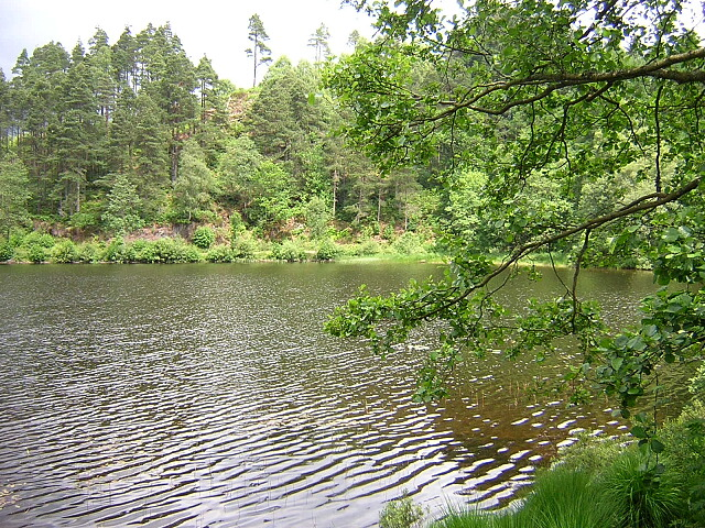 Small Bay on Loch Ard
