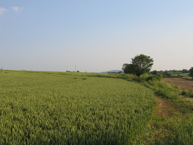 View towards Hinton