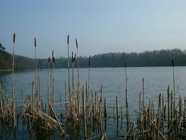The Haining Loch