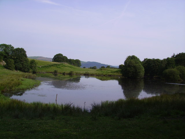 Pool Hay Bridge