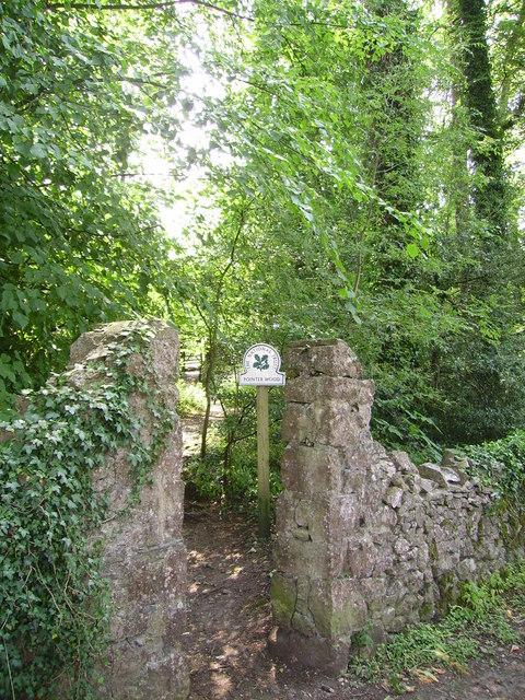 Gateway, Pointer Wood
