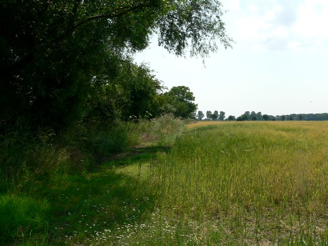 The Footpath to Woodhouse Farm