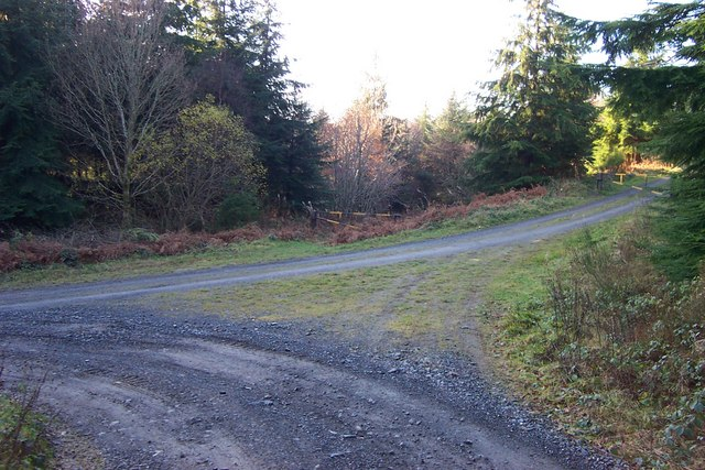 Forestry barrier at road junction