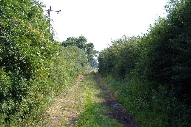 Footpath at Minshull Vernon