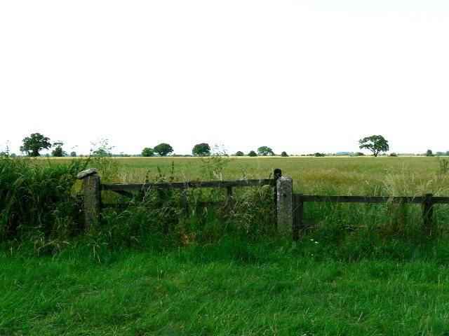 A Gate and a Field