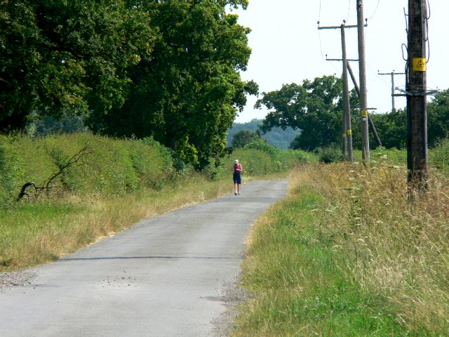 The Lonely Walker on the Country Road